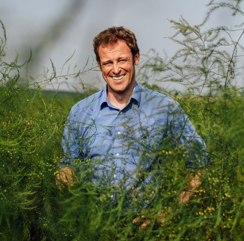 Expert asparagus grower