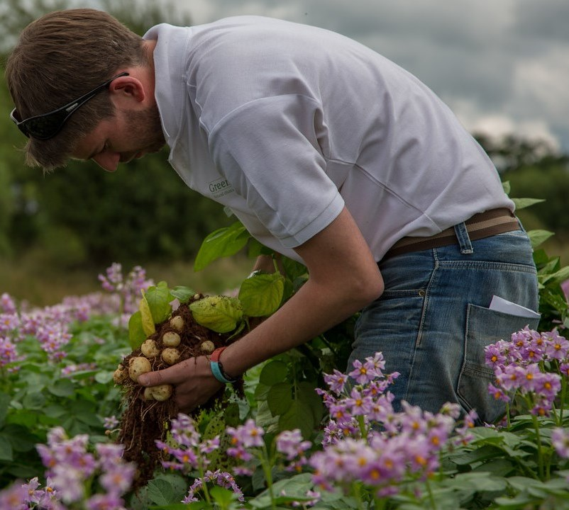Ewan Stark – Expert potato grower