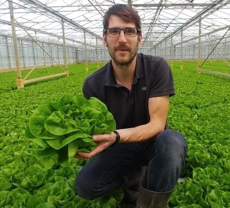 Expert salad grower