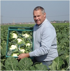 TH Clements – Expert brassica grower