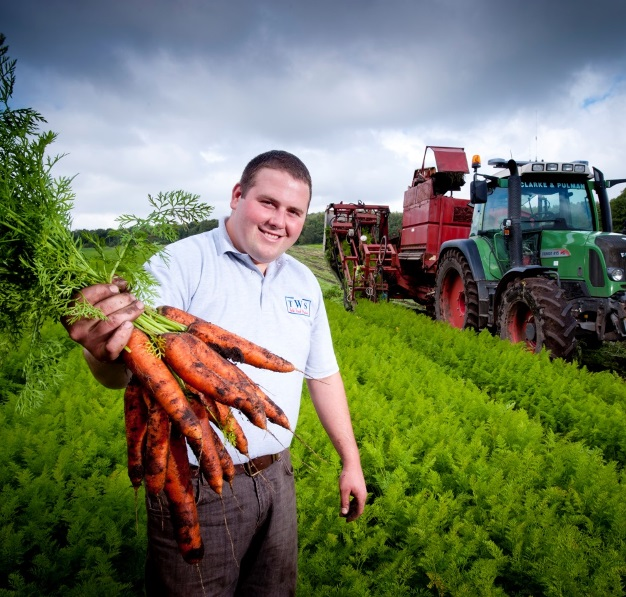 T Wilson & Sons – Expert veg and salad growers